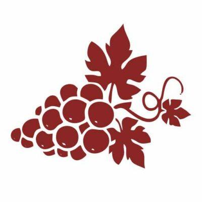Symbolbild Rote Weintrauben
