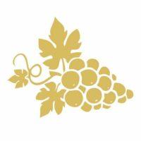 Symbolbild Weiße Weintrauben